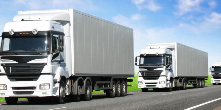 kamio2